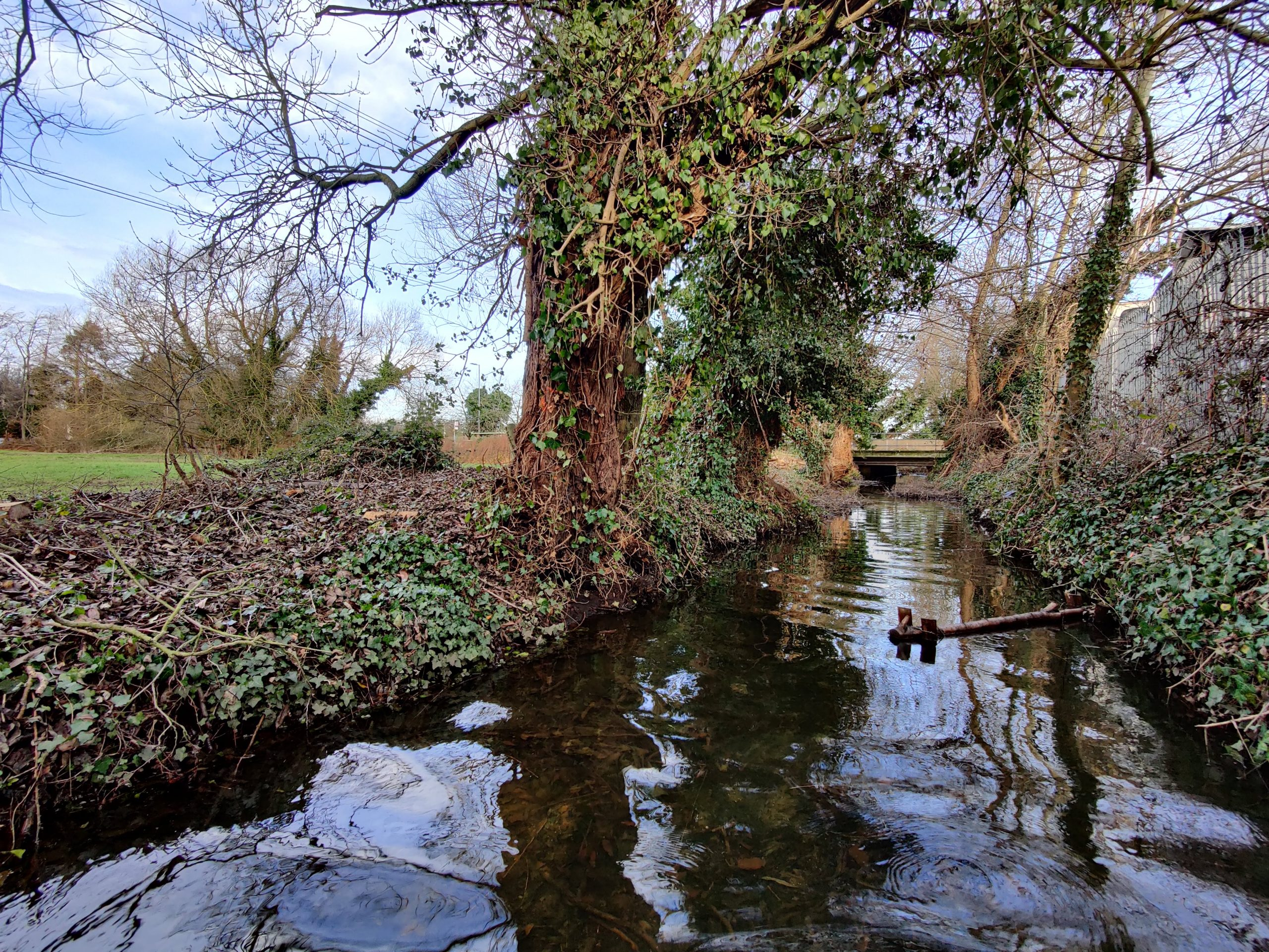 Thanks to a volunteer-led restoration project, Horton Brook is now visible to Crown Meadow residents for the first time in many years.